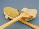 Back-Brush Scrubber